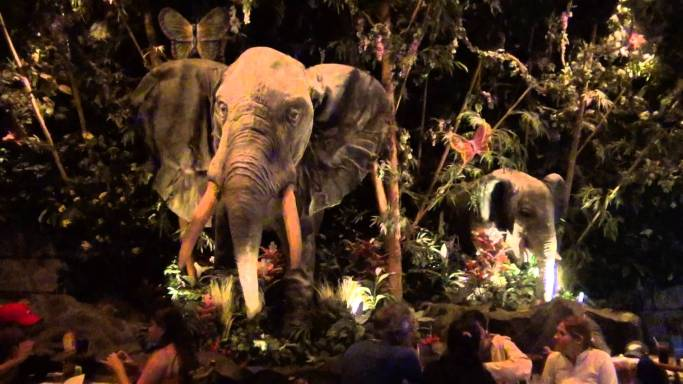 Rainforest Cafe-2